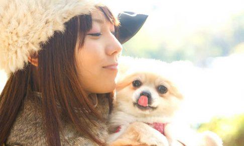 日本ペットシッターサービスのフランチャイズ加盟金や口コミ評判